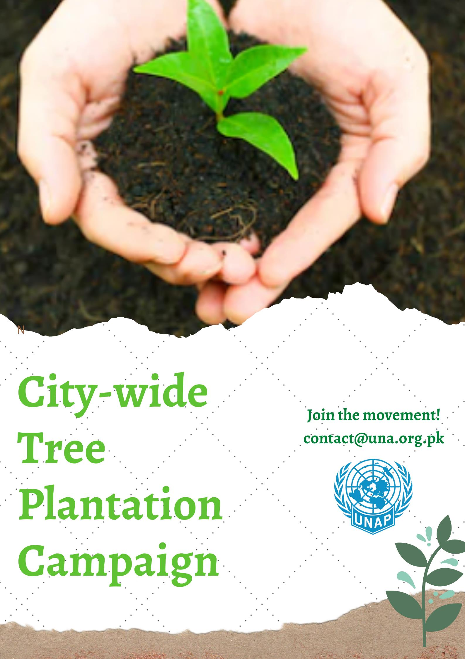 City Wide Plantation Drive